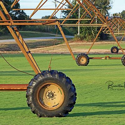 Bostwick wheel print for sale.