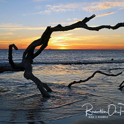 Driftwood Beach Sunrise print for sale.
