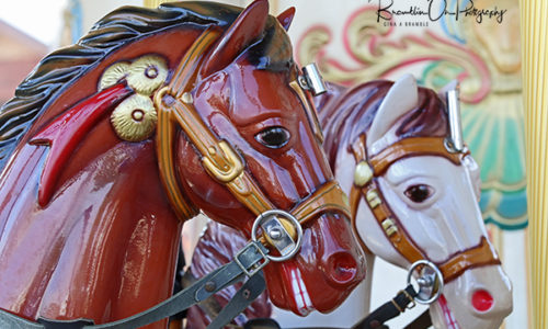 Carousel Ponies print for sale.